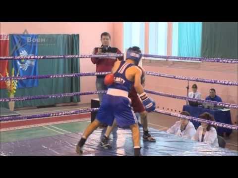 Чемпионат по боксу 2013. Весовая категория до 60 кг