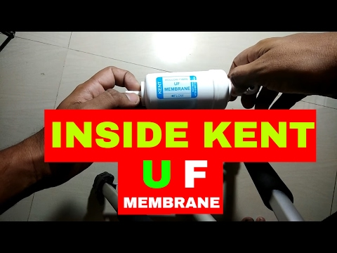 INSIDE KENT UF MEMBRANE