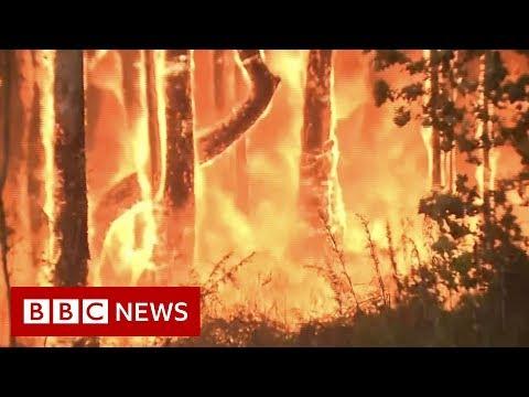 Australia bushfires: 'It's like fireballs exploding in the air' - BBC News