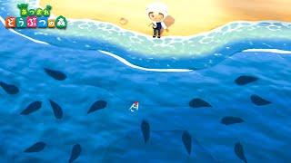 大魚しか釣れない奇跡の魚影島【あつ森】#11