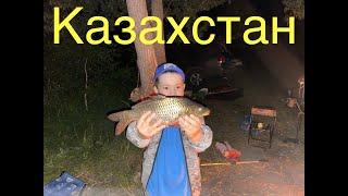 Рыбалка с ночевой оз Кайнар Казахстан карпы и караси
