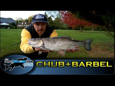 Barbel & Chub fishing on River Kennet - Series 2 - Episode 6