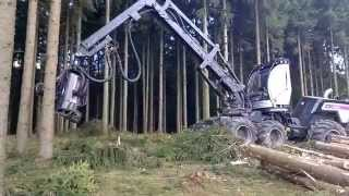 the new way to cut the tree