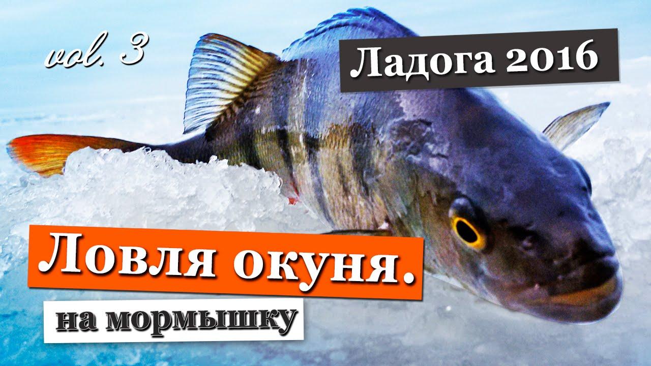 зимняя рыбалка видео на мормышку по льду