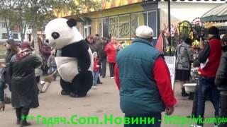 Панда на рынке - г. Гадяч 27-10-2012(, 2012-10-27T15:20:01.000Z)