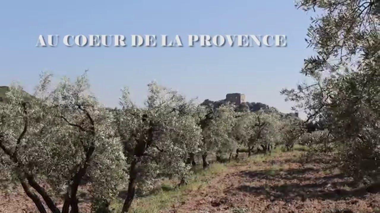 Plan De Maison Mas De Provence location mas du coussoul - provence