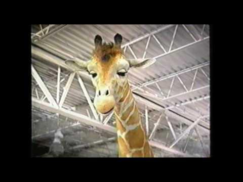 Toys R Us Hokey Pokey Elmo Commercial (2003)