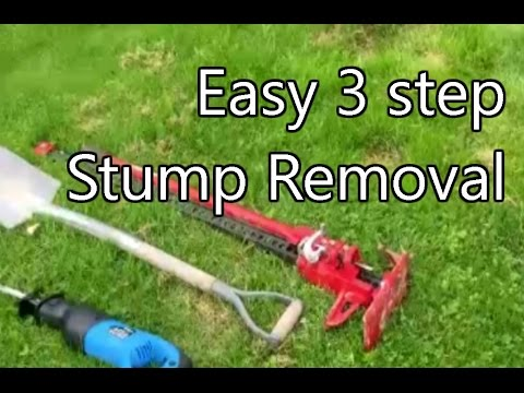 Tree Stump Removal With 3 Simple Tools
