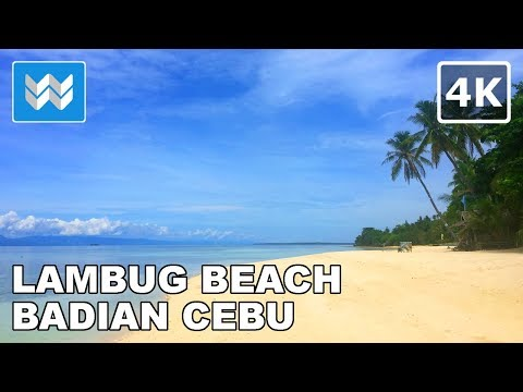 Walking along the shore of Lambug Beach in Badian, Cebu, Philippines 【4K】 🇵🇭