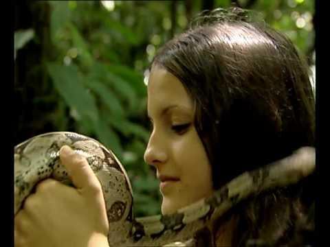 Grandeur Nature - Le monde des serpents