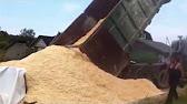 Компания вектор-е предлагаем купить мытый песок с доставкой по москве и области. Низкие цены на песок карьерный от поставщика. Собственный транспорт и перевалка.
