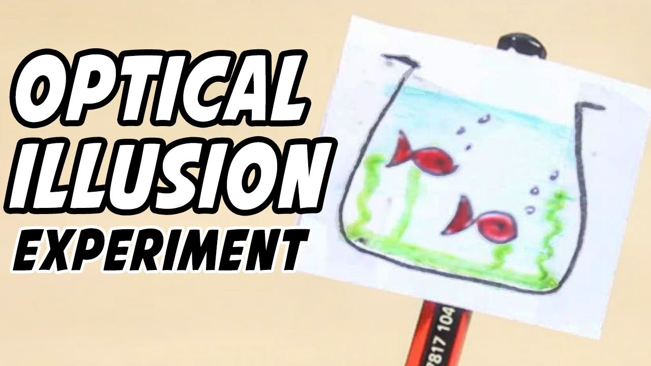 Optical Illusions Science Projects