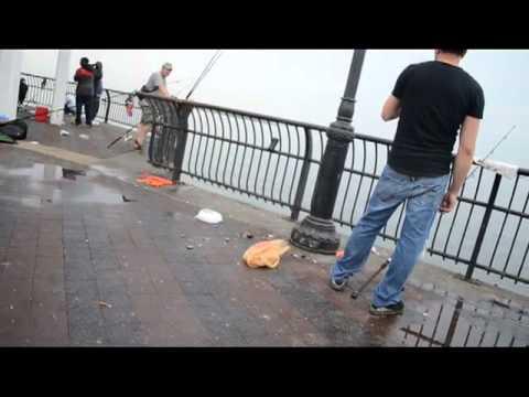 Catching Bluefish at Ocean Breeze Fishing Pier, Staten Island, N.Y.