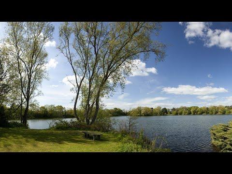 Lakeside Lodges York