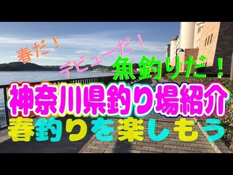 春だデビューだ魚釣りだ釣りデビューするなら春神奈川県釣り場紹介+α 2018年春版