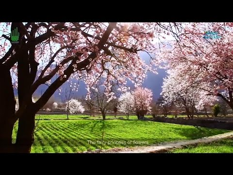 Hidden Gems of the world: Gilgit Baltistan | HD