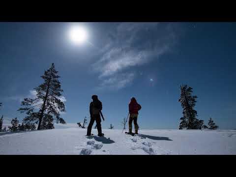 Winterzauber in Finnland