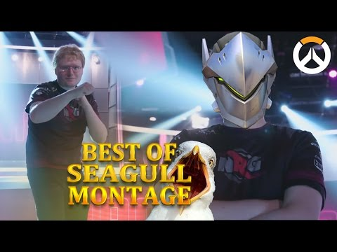 BEST OF SEAGULL MONTAGE! ► Pro Overwatch Player at his BEST & WORST