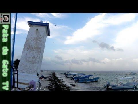 Guía Puerto Morelos / Puerto Morelos guide