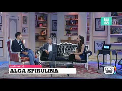 CANI, ALGA SPIRULINA, PET THERAPY E ... CUCINA