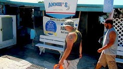 Annie's Bait & Tackle - Restaurant Review - Cortez, FL