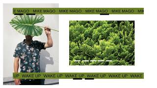 Mike Mago - Wake Up