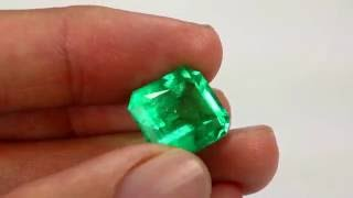 Vivid And Rare Emerald Cut Emerald For Wholesale Price From Colombia