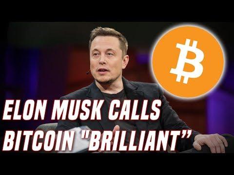 "Elon Musk Calls Bitcoin ""Brilliant"" | Here's Why He's Optimistic"