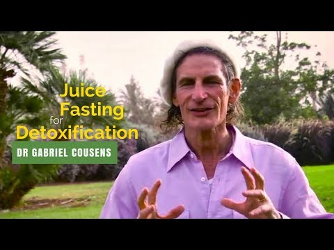 Dr Gabriel Cousens | Juice Fasting for Detoxification | Fasting Summit