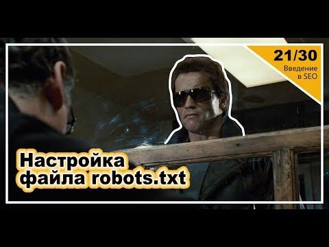 Урок 21: Настройка файла Robots.txt. Введение в SEO