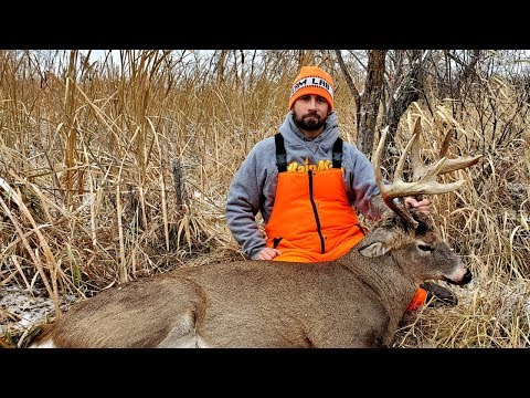 Big 12 Pt Swamp Buck Down!! Deer Hunting Minnesota Rifle Season