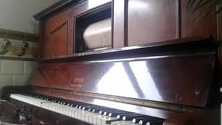 Valencia | José Padilla | Pianola Steck player piano |