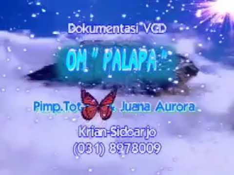 PALAPA - BEKU - BRODIN