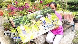 'K' Awards Western Visayas