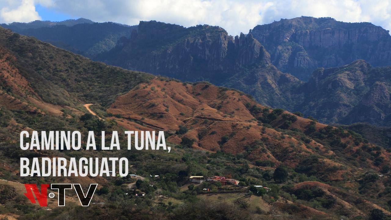 Image result for imágenes de la tuna badiraguato..