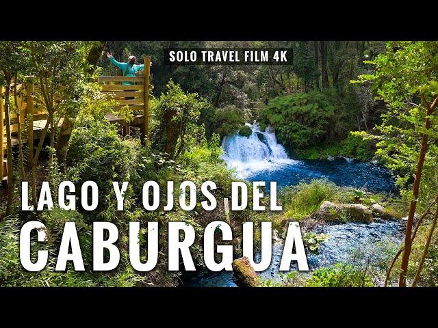 Lago y Ojos del Caburgua en 4K: Trekking en Pucón, Chile