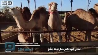 مصر العربية | أضاحي العيد تكسر حصار غوطة دمشق