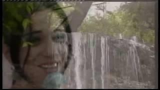 Sevinc Abbasova - Arif Lacinli - İxtiyar Donmez - Super ifalar