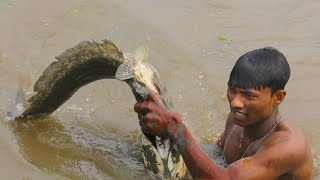 unique fishing videos |  underwater giant snakehead fish catching by hand