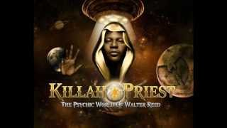 10. Killah Priest - Visionz [The Psychic World Of Walter Reed  CD1]