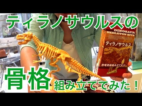 VT026 エデュトイ 51ピース 恐竜工作 EDU-TOYS ティラノサウルス キット