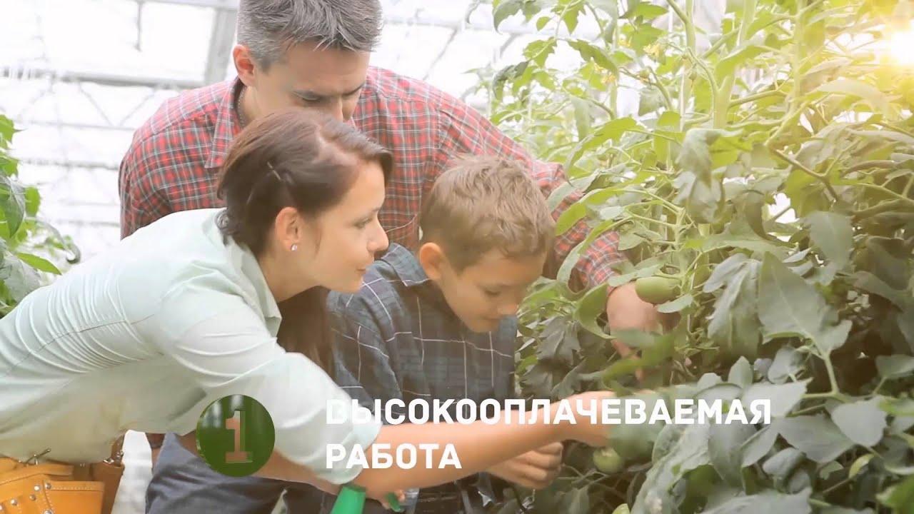 Как построить экологичный дом? Построить дом в Экополисе. Строительство дома.