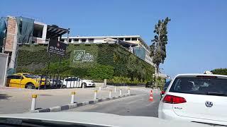 Стоим в пробке в центре Кирении Северный Кипр и любуемся шедевром садовников панно из растений