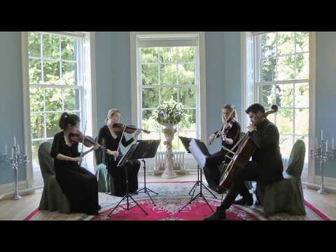 Perfect (Ed Sheeran) Wedding String Quartet