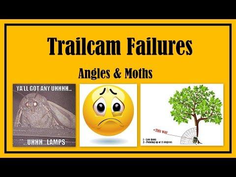 Angles & Moths - Trailcam failures