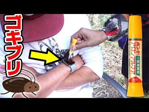 【ドッキリ】ゴキブリを接着剤でアップルウォッチに付けてみた!!!