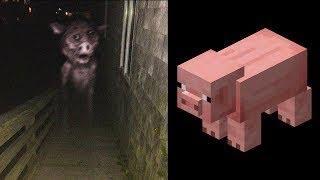 Ces Monstres Minecraft Existent Dans La Vraie Vie !.. (ft. @Noa. )