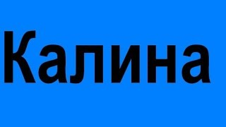 Ресторан украинской европейской кухни Киев недорогой вкусные шашлыки  блюда недорого заказать(