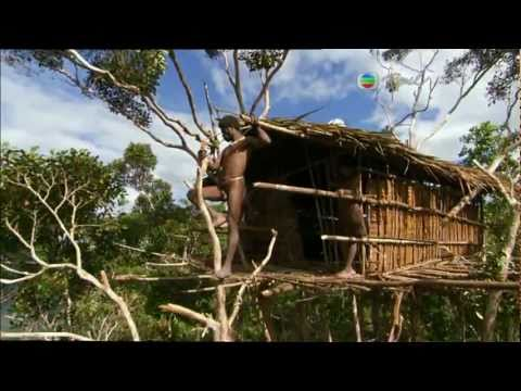Building Treehouse in Jungle - Human《家》2011