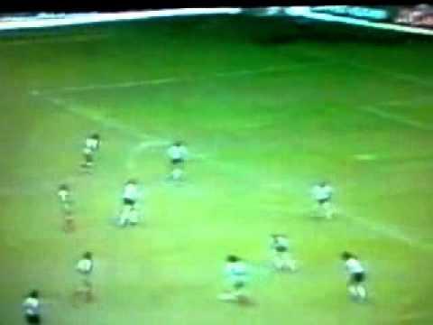 algeria fotball star